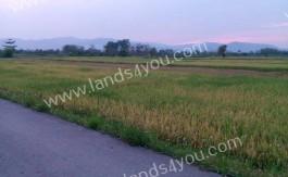 Lands4you_0588 (1)